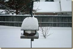 snow1-10jan2011