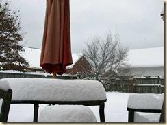 snow2-10jan2011